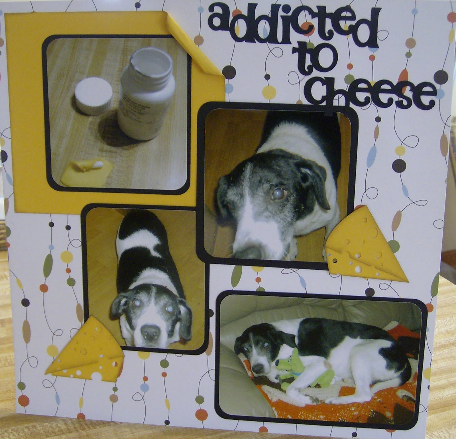 Picture of Cheese....please!!!