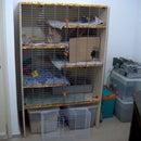 House Rabbit Palace
