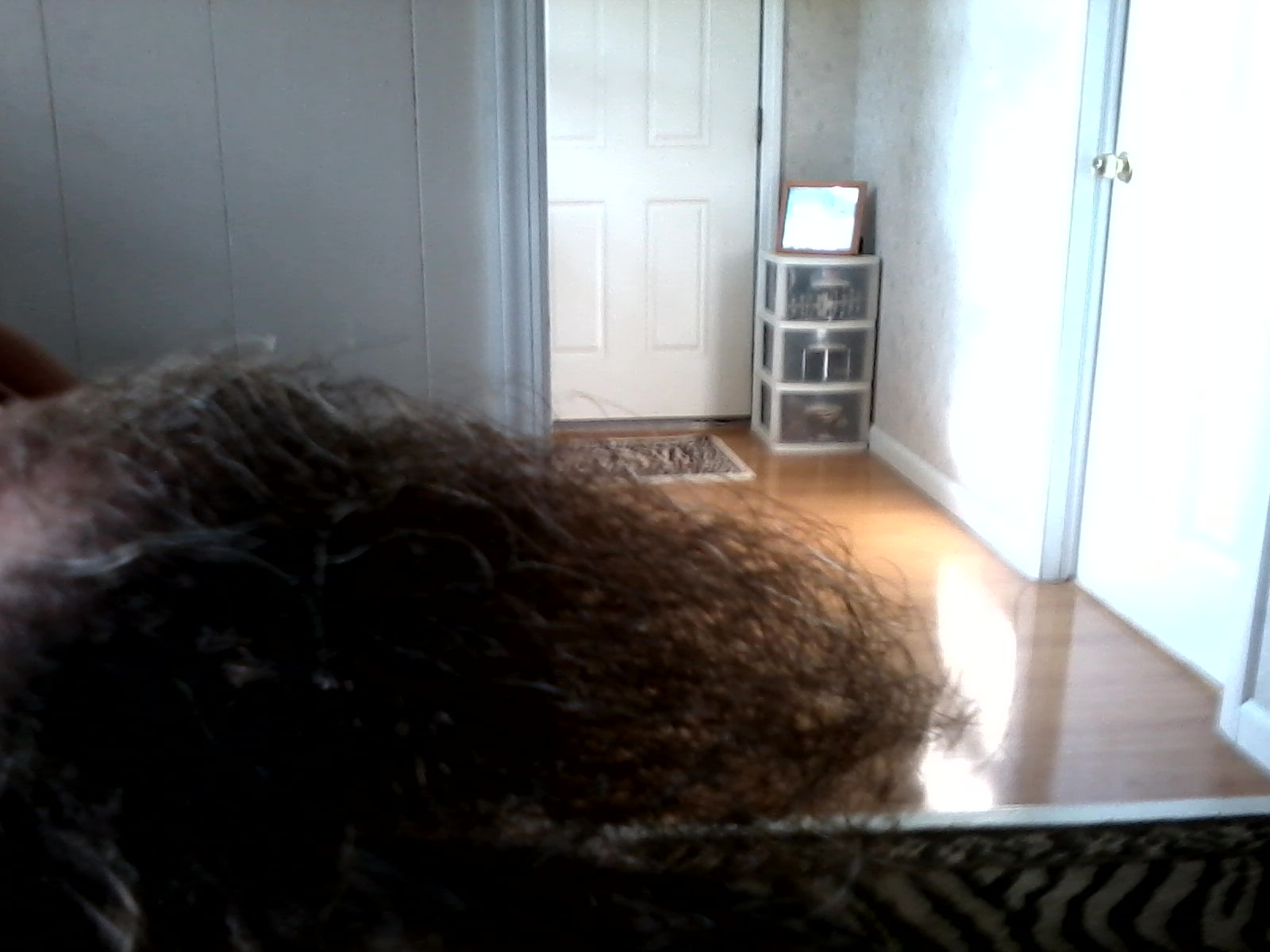 Picture of Grow Some Hair