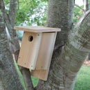 How to Build a NABS Birdhouse