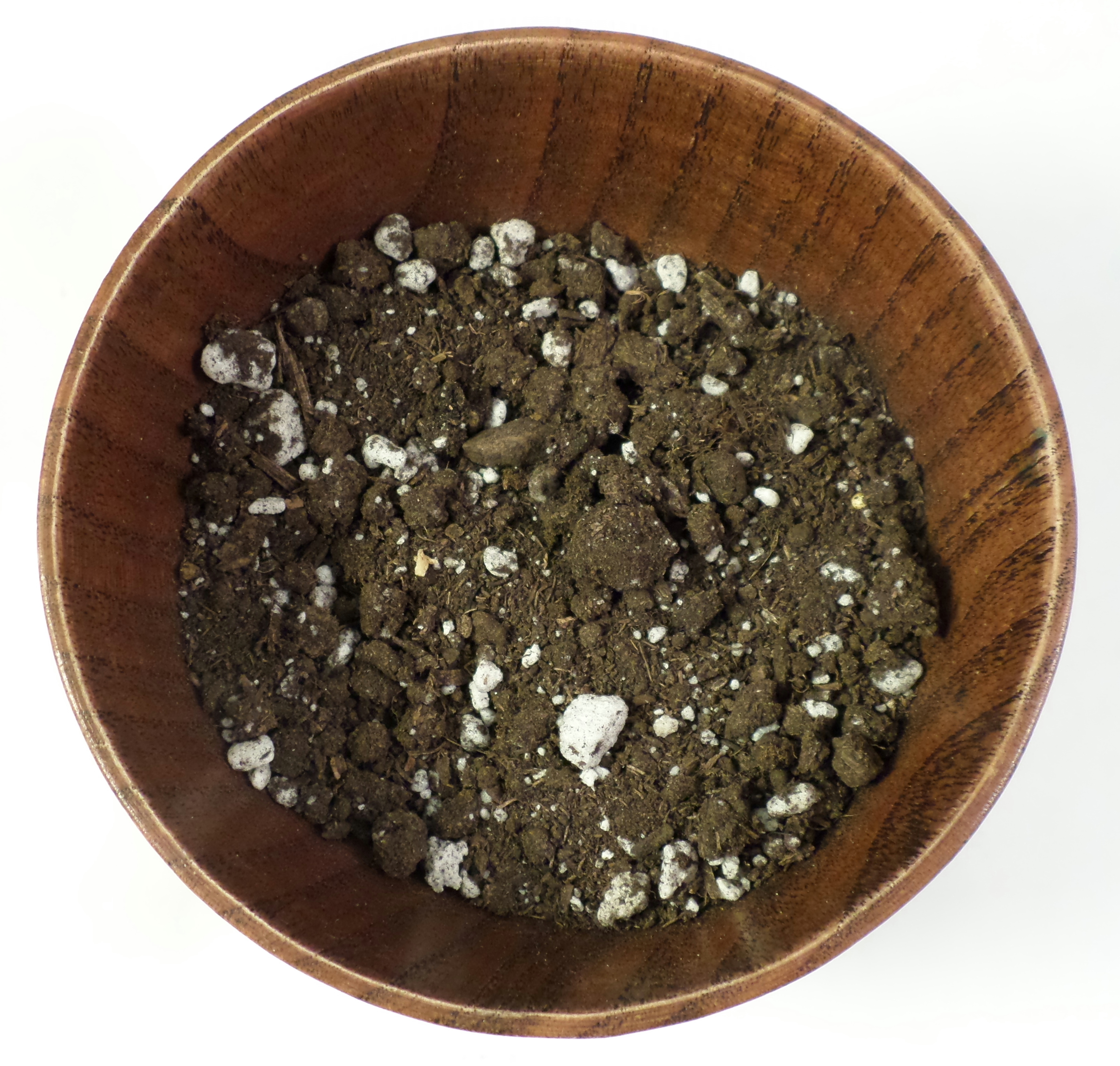 Picture of Adding the Soil