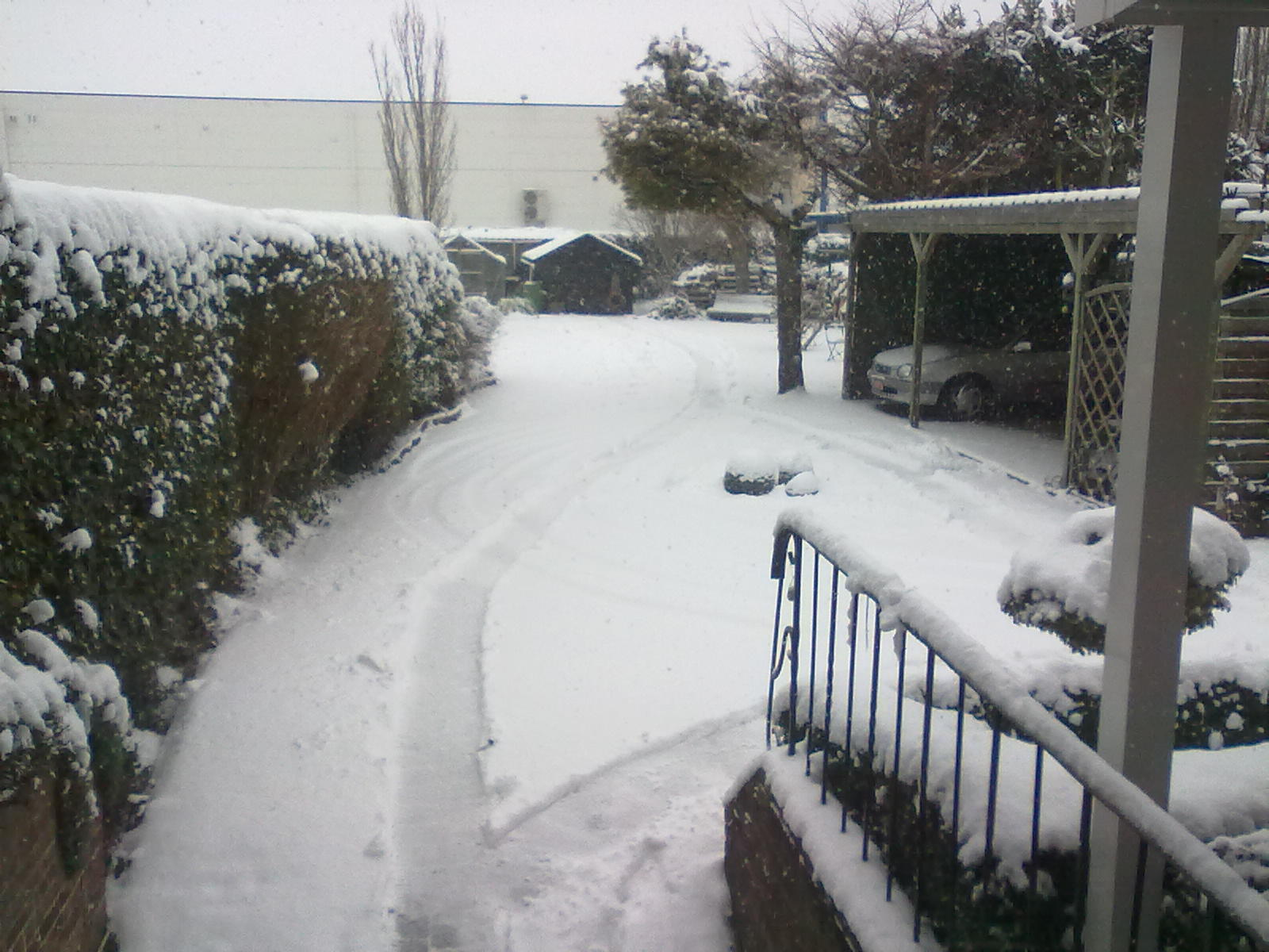 Picture of Is it already snowing in your town?