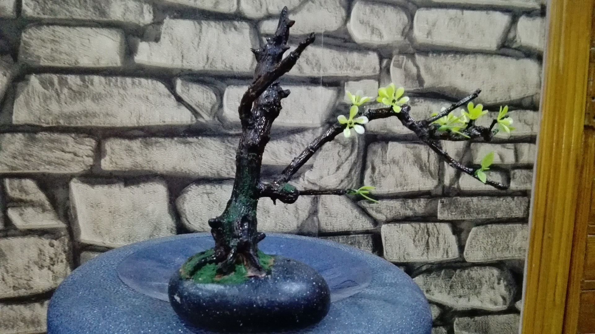 Picture of How to Make Mini Bonsai Tree