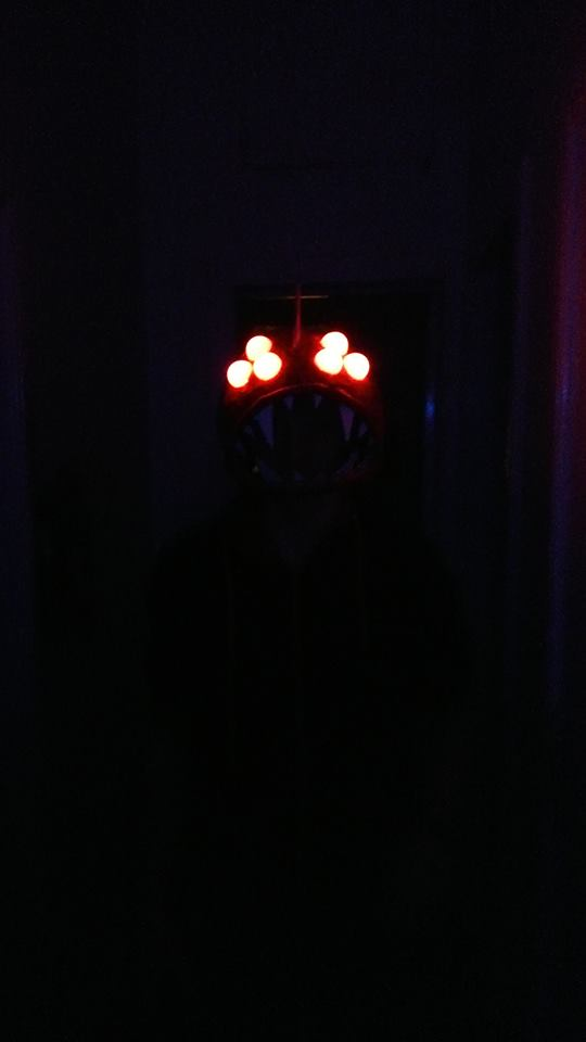 Picture of Test the LEDs