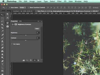 Create a Brightness/Contrast Adjustment Layer