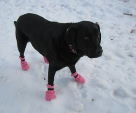 10 Minute Dog Boots