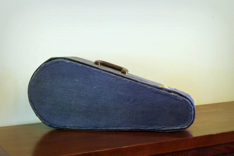 Picture of A Cardboard Ukulele Case