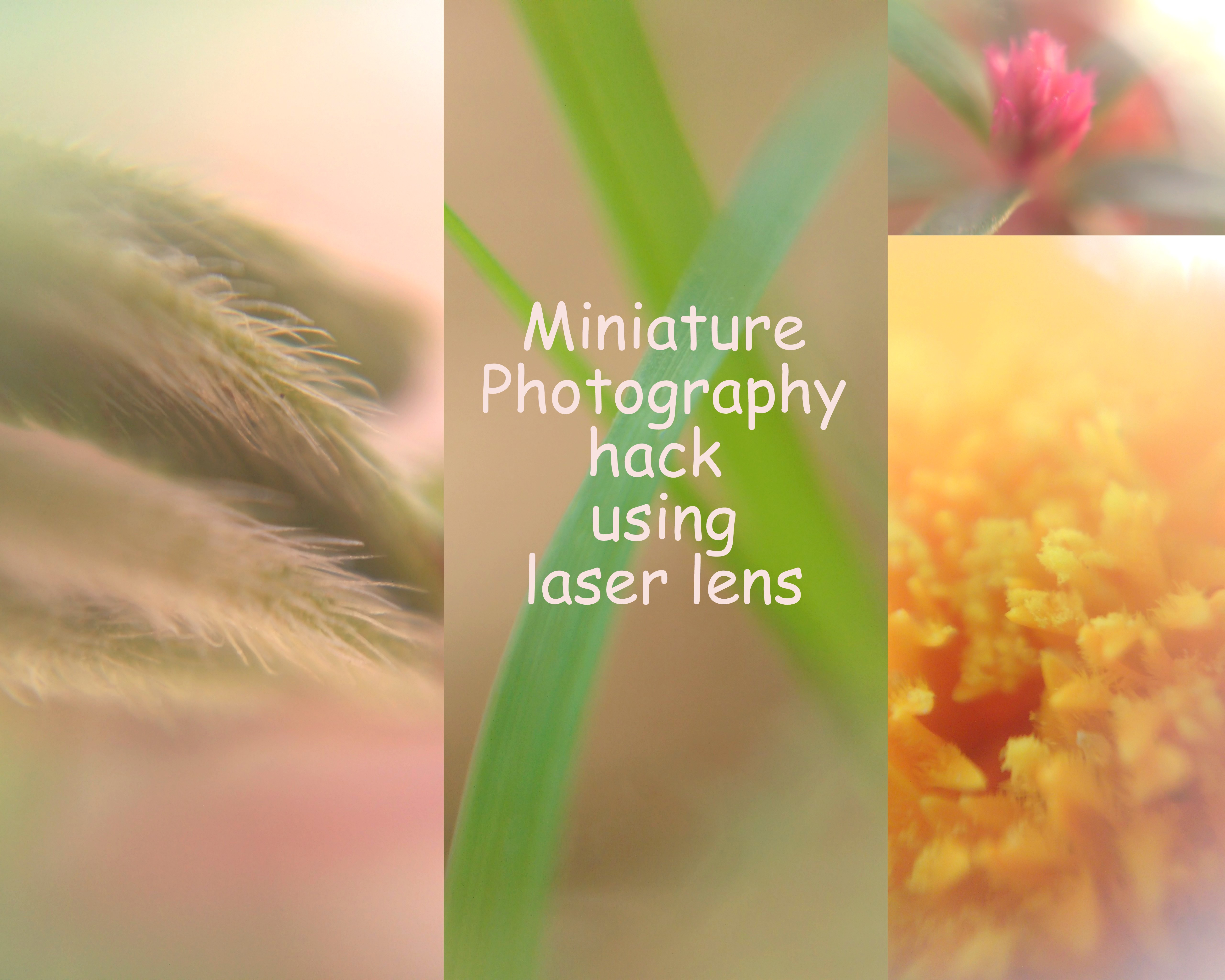Picture of Miniature/Magnifined Photography Hack Using Laser Lens-DIY