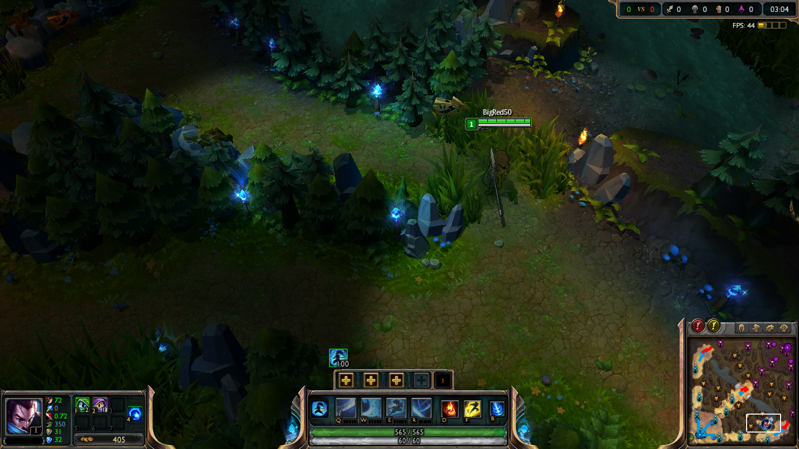 Picture of Champion Vision in Bushes