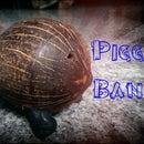 Coconut Piggy Bank