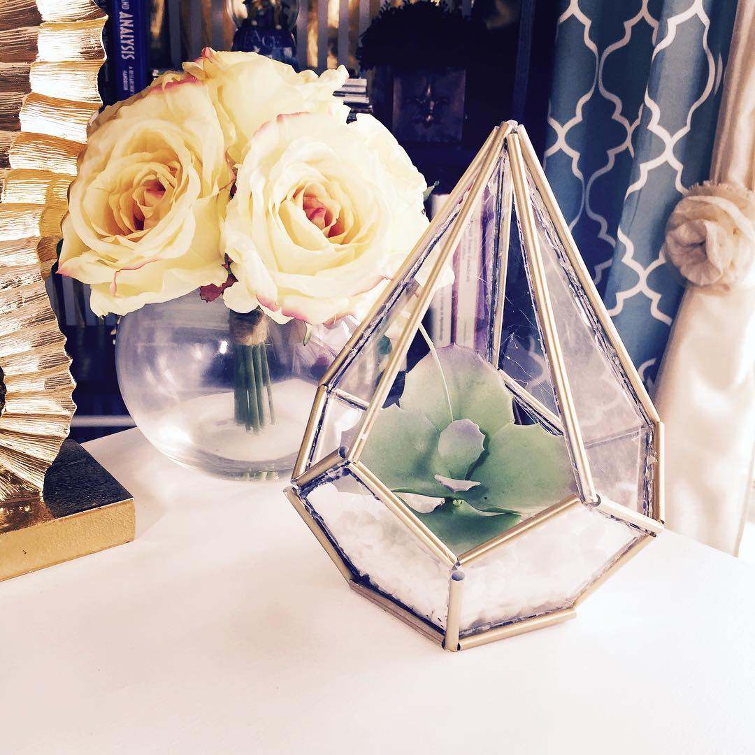 Picture of DIY Succulent Terrarium by Home Made Luxe Subscription Box