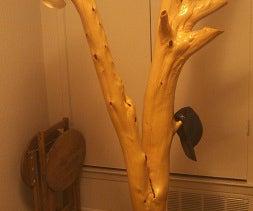 Cedar Tree Coat Rack