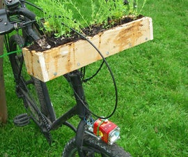 Bicycle Window Box- For the transient gardener.