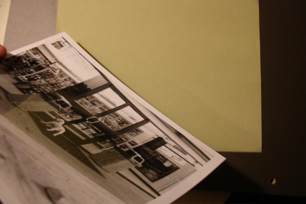 Picture of How to Develop a Photo Using Blueprint Paper and Windex