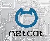 Netcat in Python