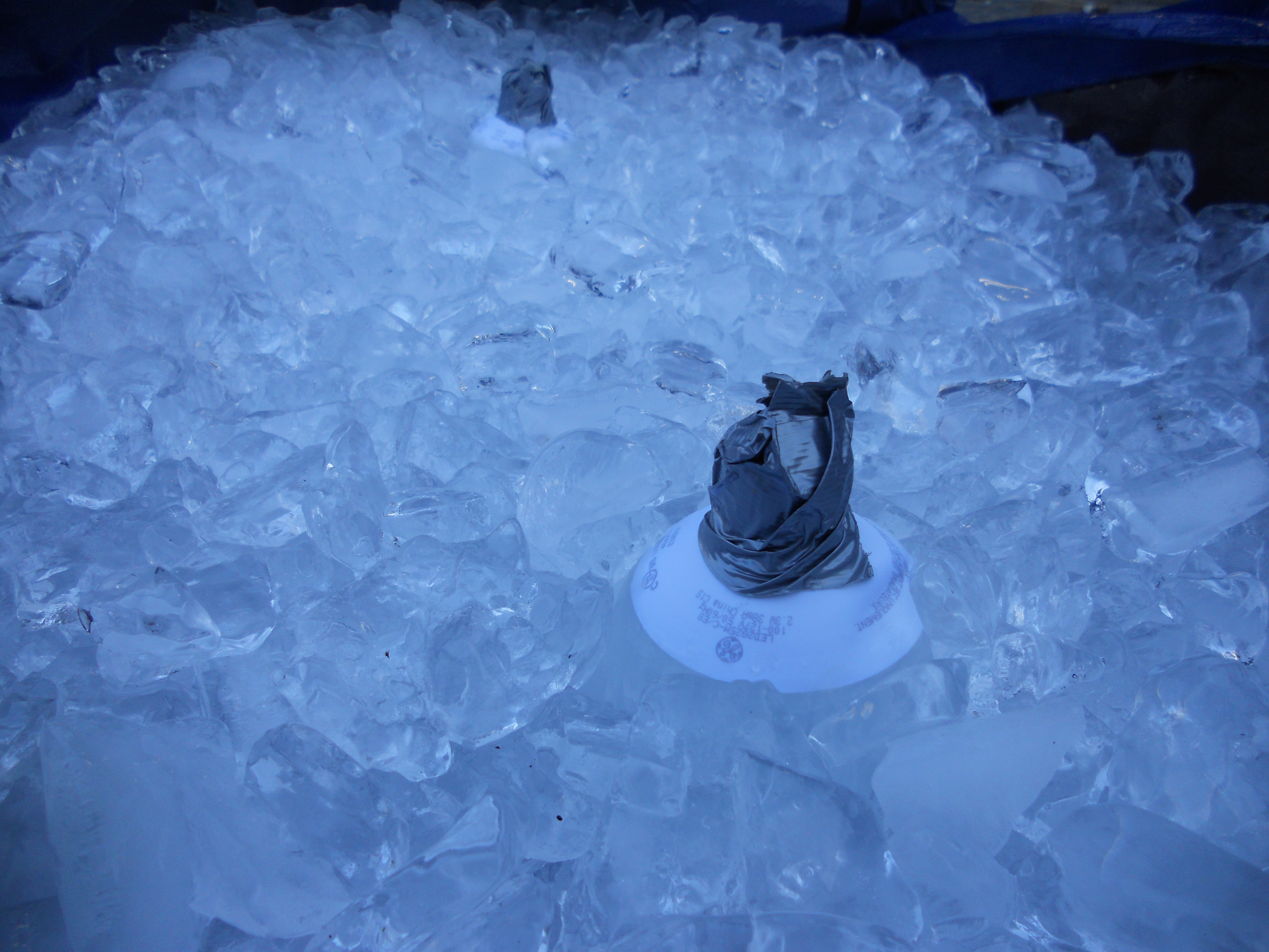 Picture of Step 4: Fill Your Container With Ice and Insert Bulbs