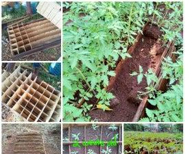Ital Seedling Box