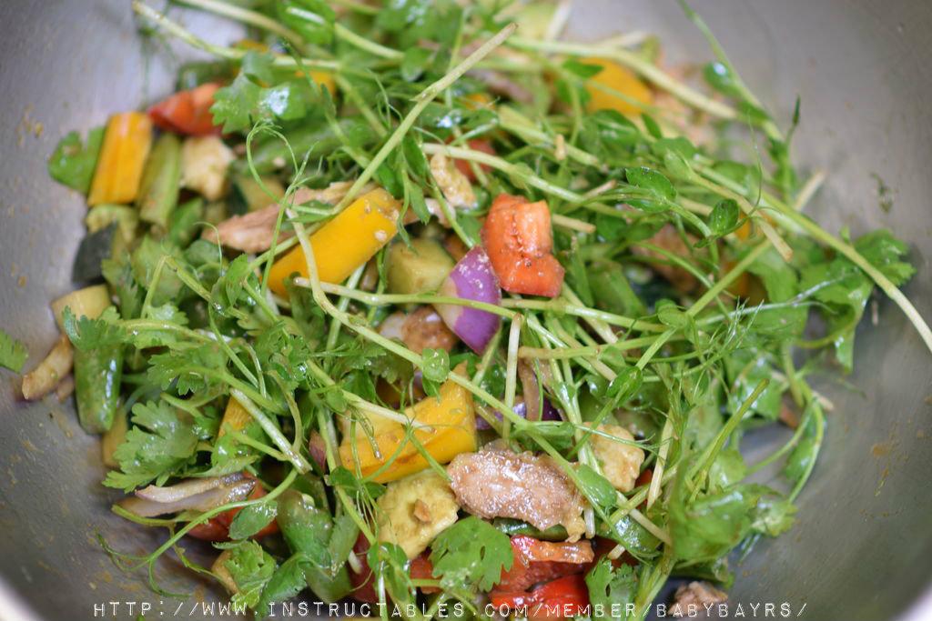 Picture of Year-Round Indoor Salad Gardening( Stage I)