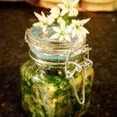 Wild Garlic and Basil Chunky Pesto