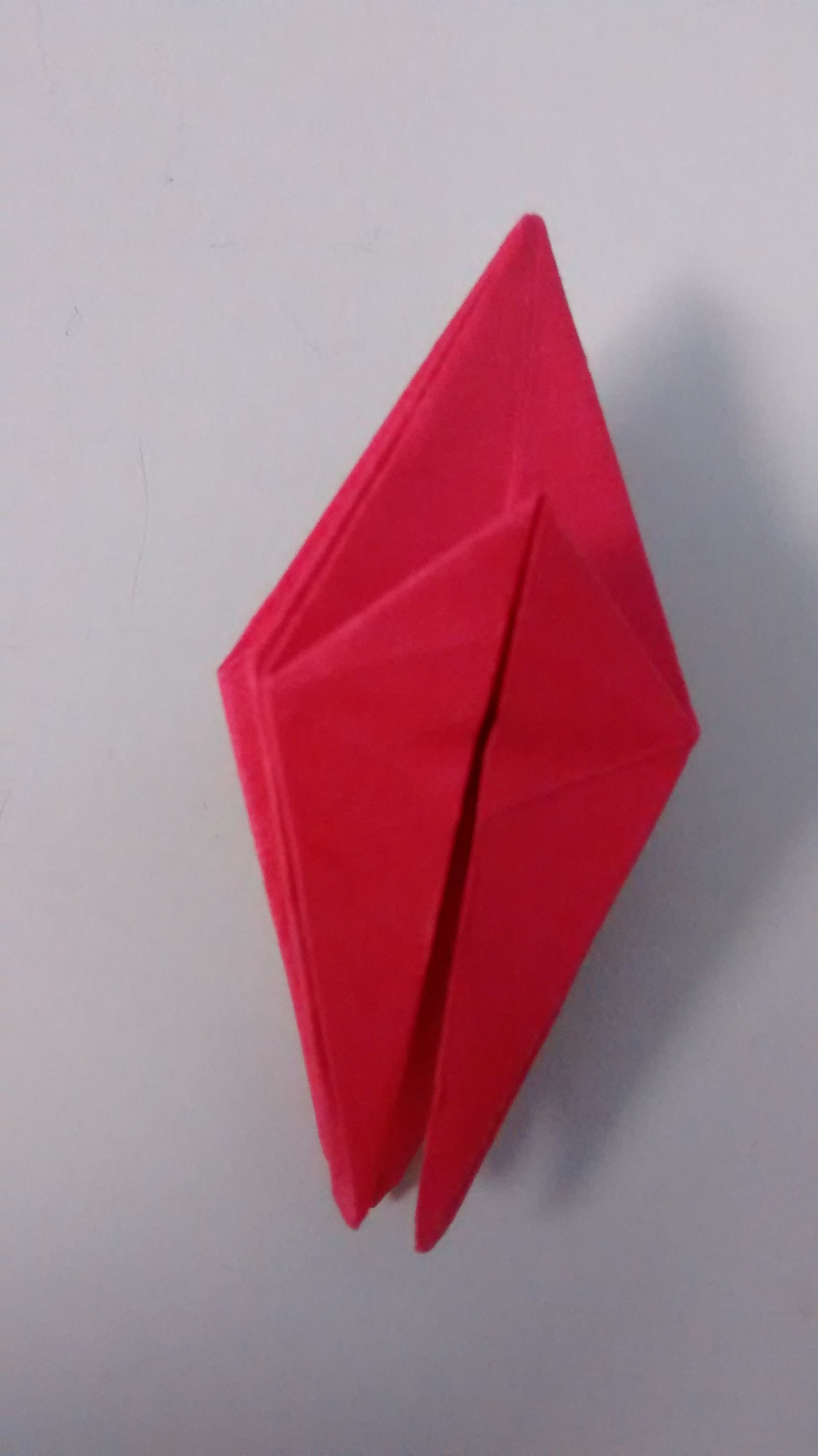 Picture of Folding Step 3