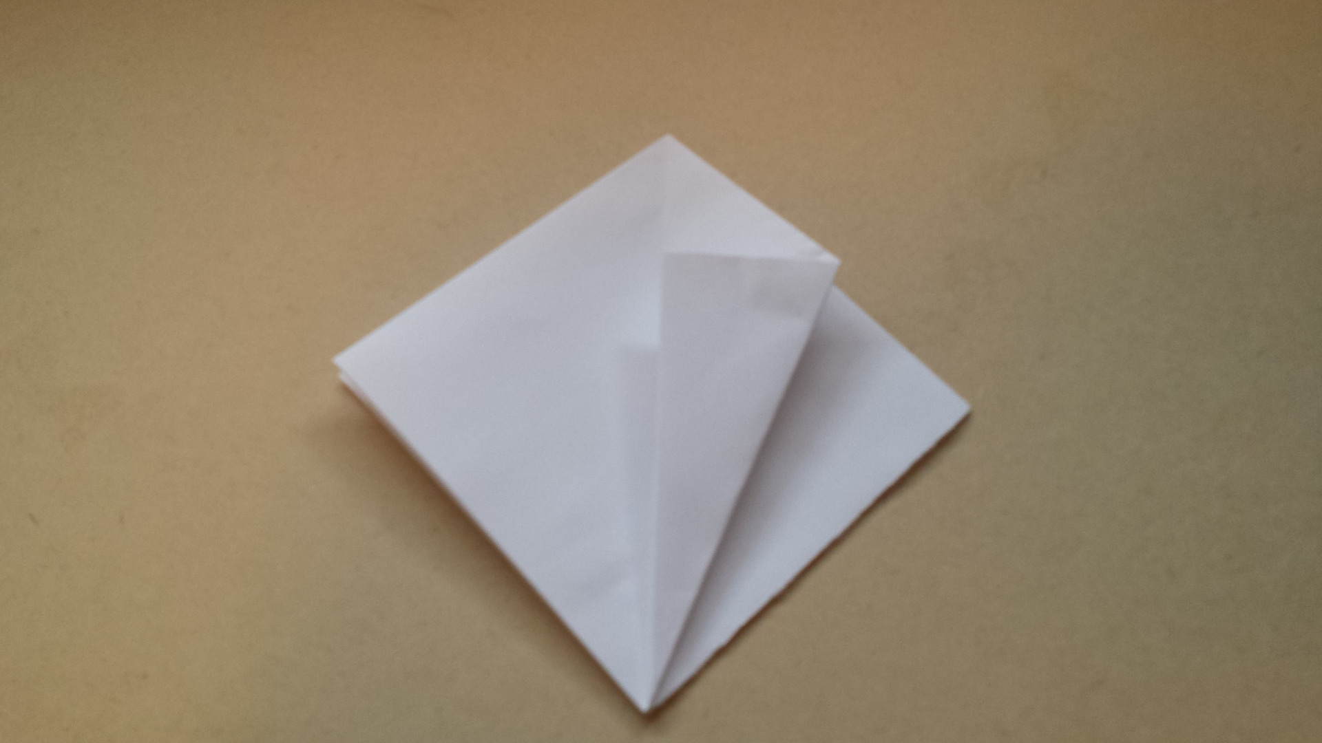 Picture of Fold Tip of the Flap As Shown Across So That the Edge Meets the Center Line, Repeat on Left, Unfold Both