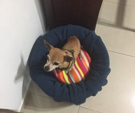 Dog Booster Car Seat (NO SEW)