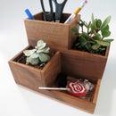 Desktop Organizer and Succulent Planter