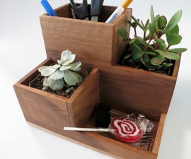 Desktop Organizer and Succulent Planter