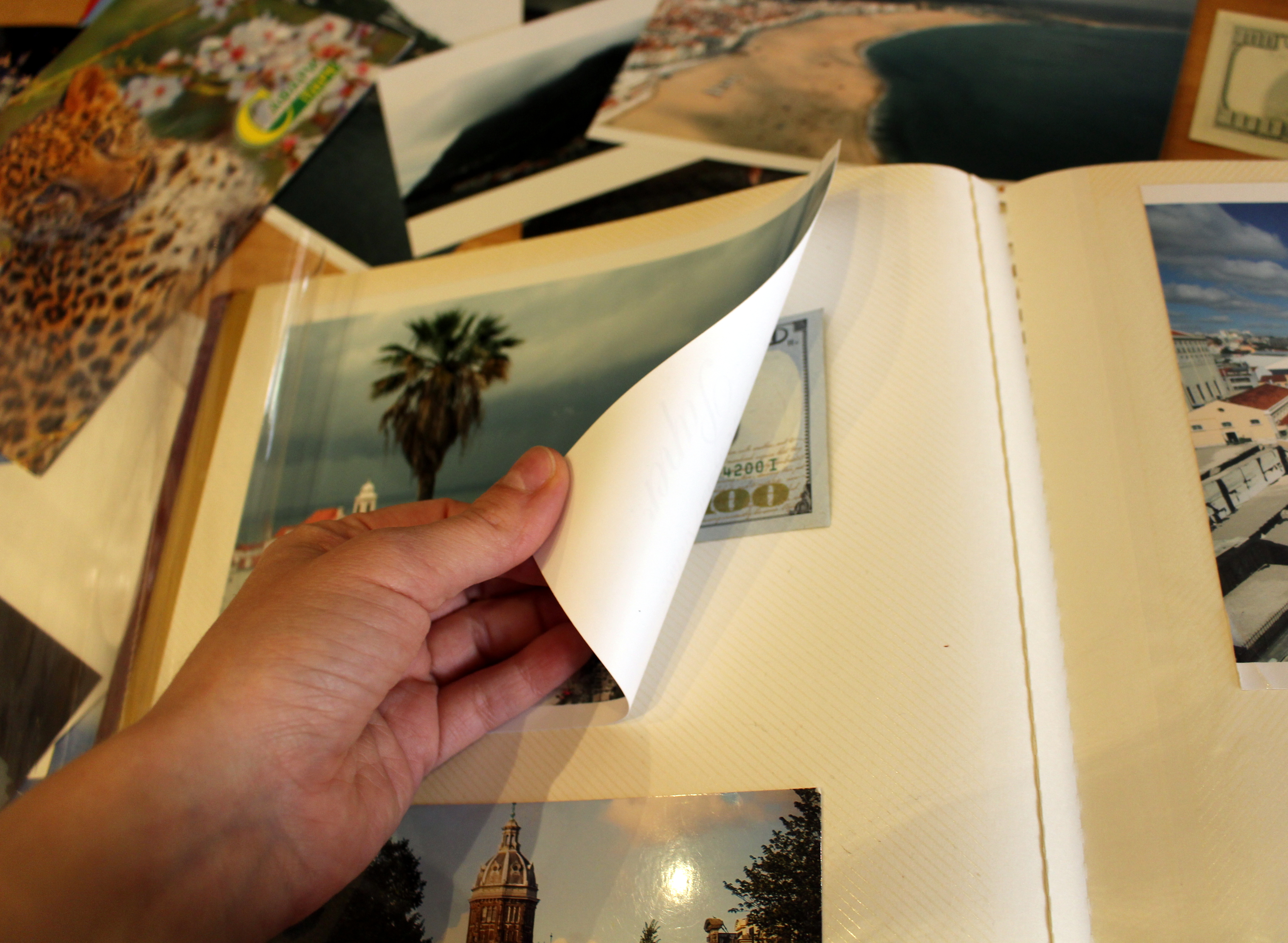 Picture of Magnetic Page Photo Album Hiding Place