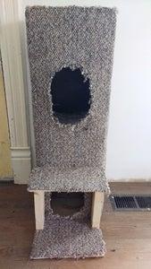 Design a Kitty Condo!