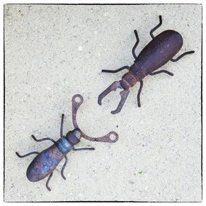Junk Yard Beetles