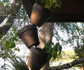 Make a Hanging Garden