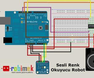 Color Reader Speaking Robot