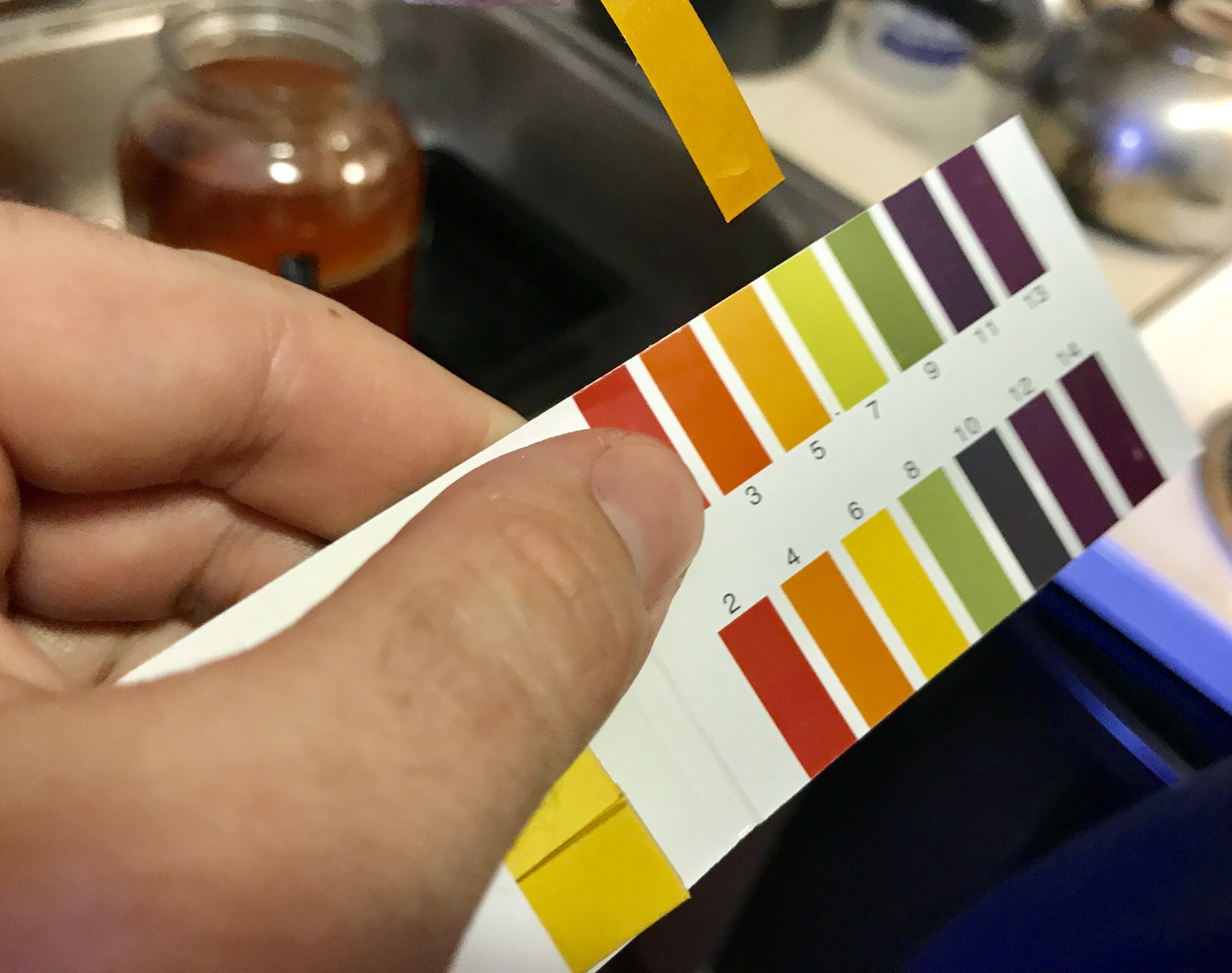 Picture of PH Strips