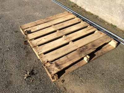 The Pallet and the Panel