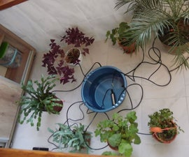 Micro irrigation system for house plants