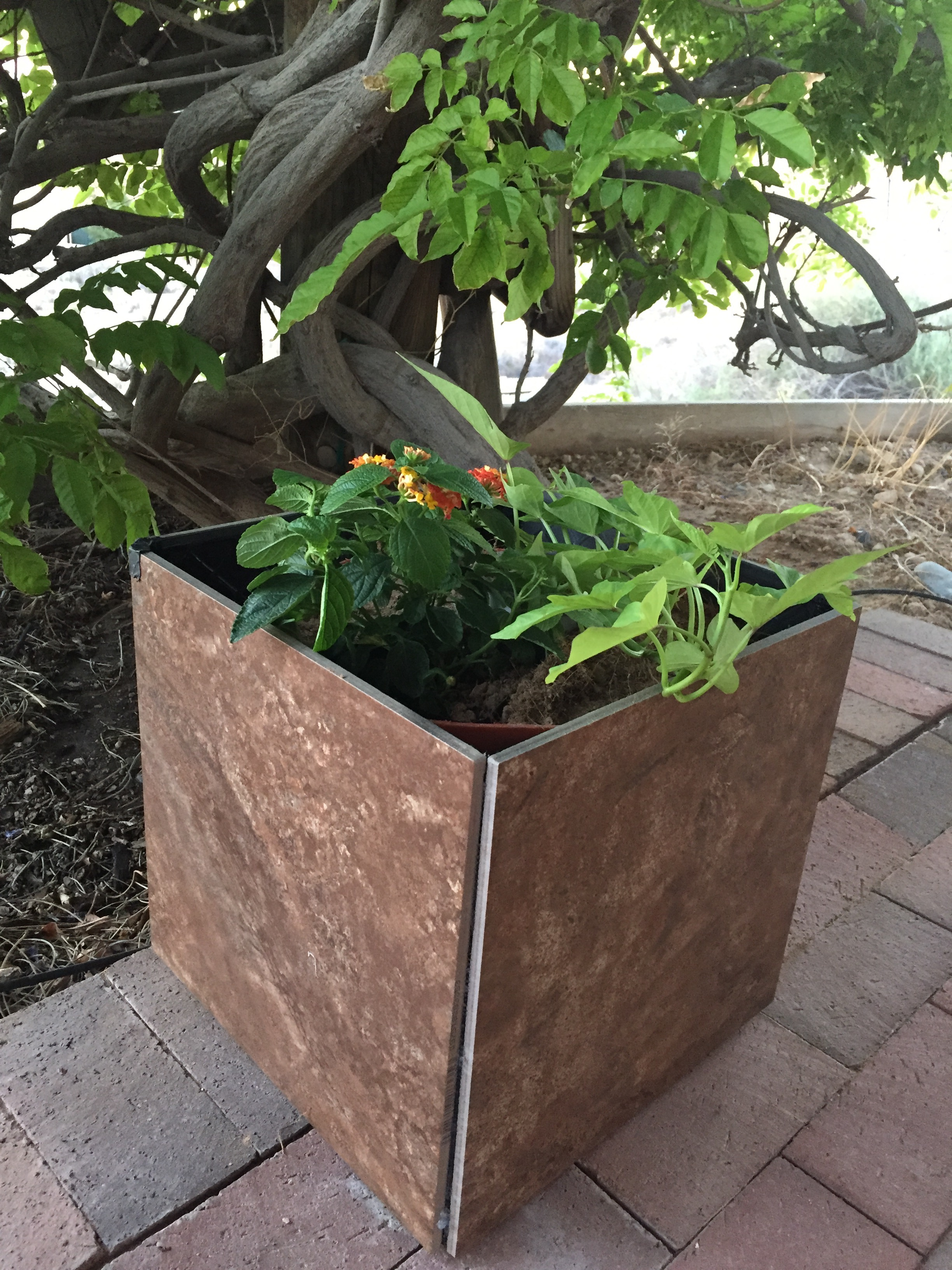 Picture of Fast, Easy Tile Planter