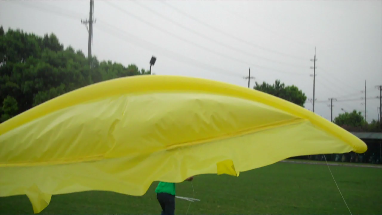 Picture of Inflatable Kites