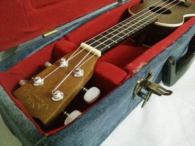 The Cardboard Ukulele Case