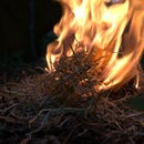 Making a Fire using the Flint and Steel Method (Hands on Bushcraft)