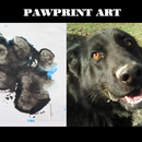 Pawprint Print With Paint