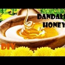 How to make Dandelion honey Old recipe