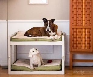DIY Dog Bunk Beds