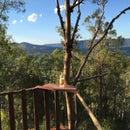 DIY Tree MANOR - Australia Day ready