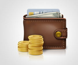 Electronic Wallet