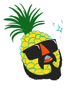 Mr Pineapple Head