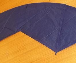 Simple Bamboo and Tissue Paper Indoor/Outdoor Kites