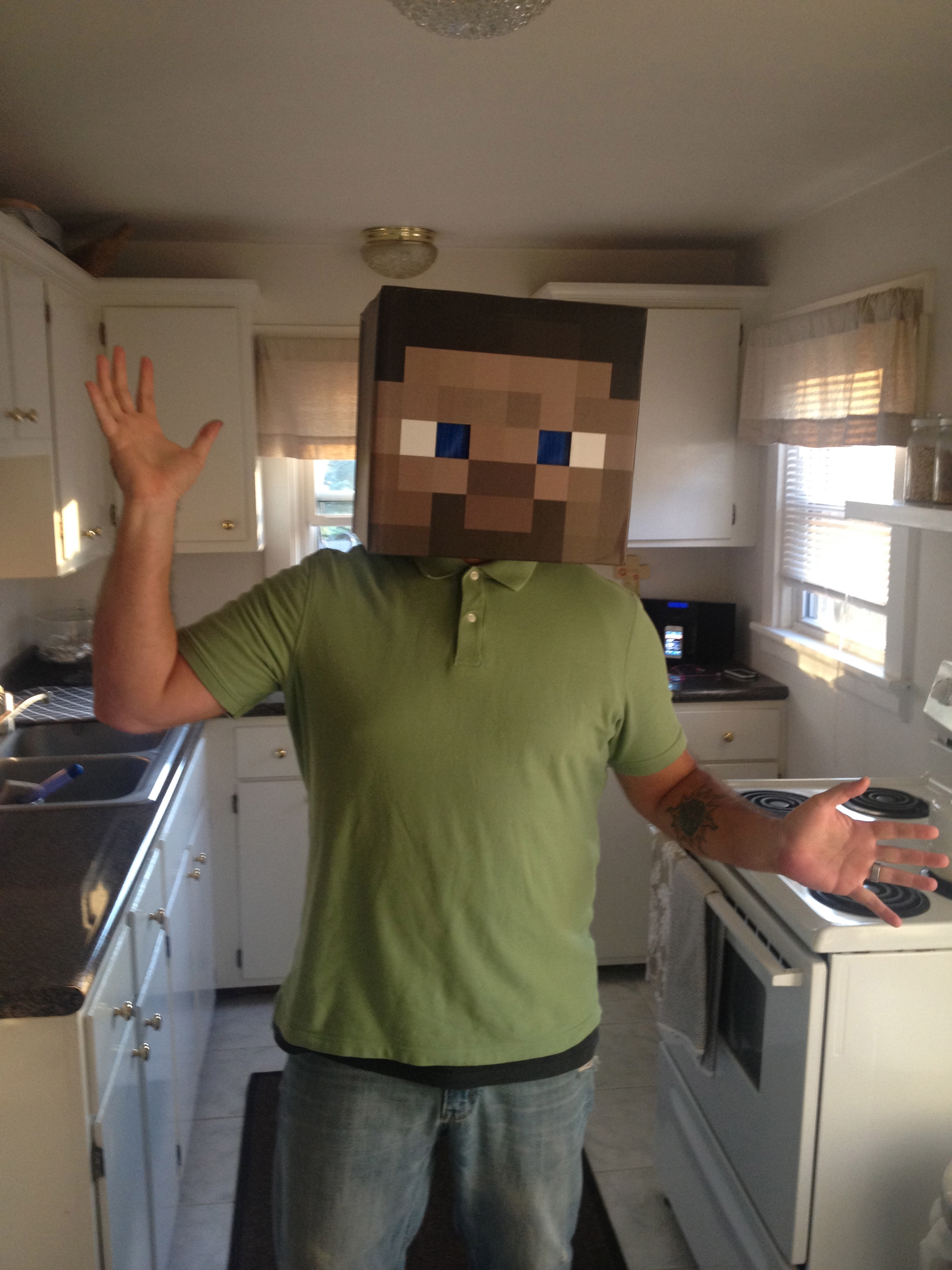 Picture of Minecraft Steve Stable Head Build