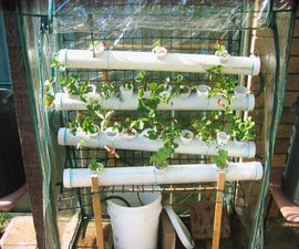 Hydroponic Food Factory