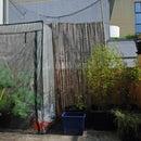 Plastic Greenhouse Example